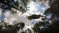 view of ziplining through treetops