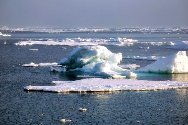 Arctic sea ice: NOAA