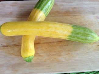 Belle of the September market: zephyr zucchini