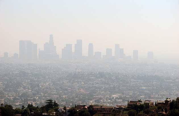 Los Angeles Ben Amstutz