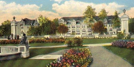 """""""Newt University"""""""
